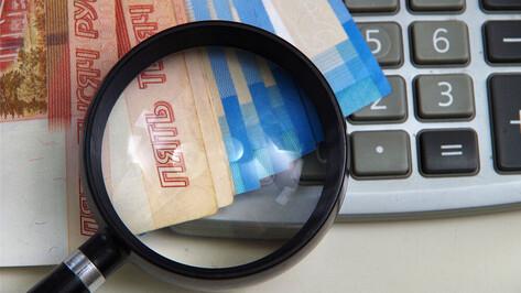 Воронежские власти учли влияние коронавируса при формировании бюджета