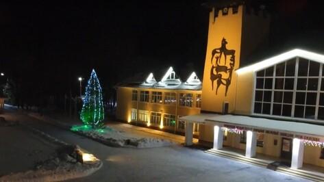 Сотрудники Воронежского заповедника сняли зимнее видео с помощью квадрокоптера