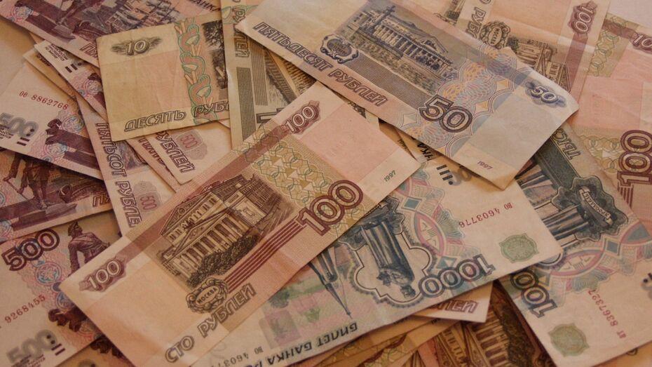Средняя зарплата в Воронежской области составила 26,5 тыс рублей