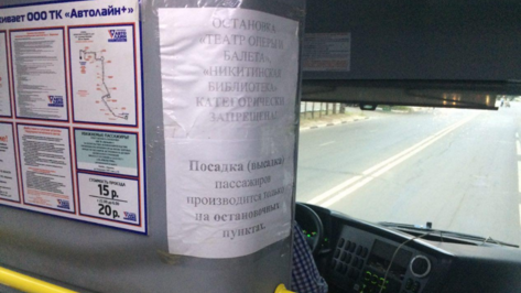 Перевозчик объяснил запрет остановки автобуса №125 у оперного театра в Воронеже
