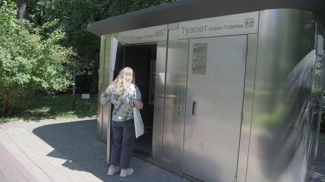 Жительница Воронежа пожаловалась на грязь в общественном туалете в Кольцовском сквере