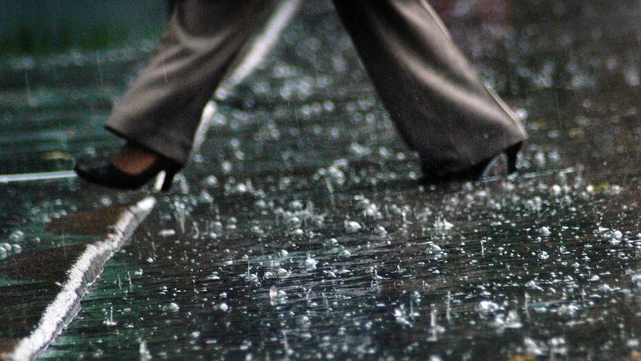 Прохладная и дождливая погода сохранится в Воронеже в выходные