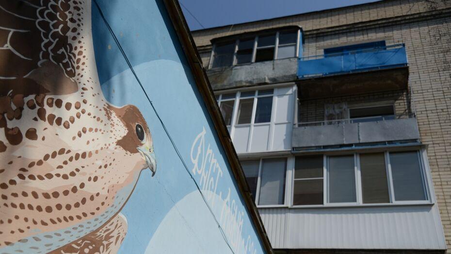 В Воронеже составят экскурсионные маршруты по уличному искусству
