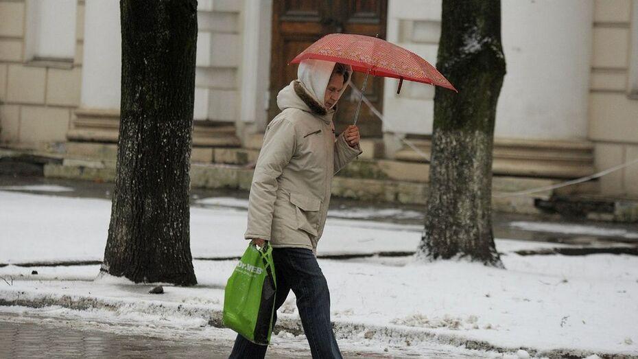 В Воронеже начало февраля будет дождливым