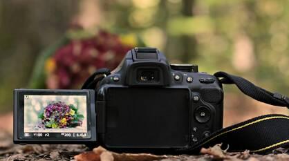 Воронежский департамент образования пригласил молодых фотографов на фестиваль «Авторы.VRN»