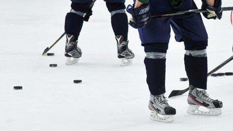 Хоккейной «Россоши» нашли тренера в Подмосковье