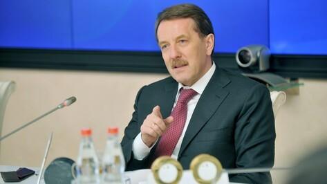 Алексей Гордеев: «Воронежской культуре нужен опытный управленец»