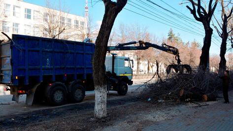 В Воронеже на 2 дня частично перекроют участок улицы Менделеева
