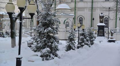 Итоги недели. Что важного произошло в Воронежской области с 11 по 17 января