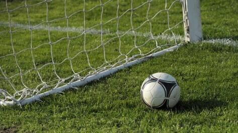 Воронежский «Факел» переиграл белгородский «Энергомаш» в контрольном матче
