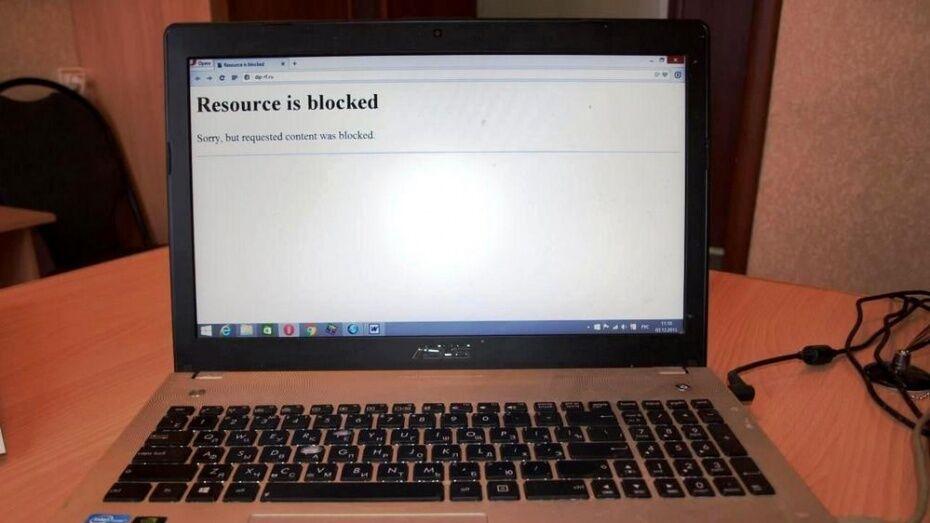 Суд Воронежа заблокировал 15 экстремистских сайтов