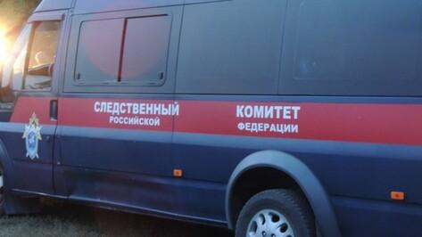 Следователи разберутся в причинах гибели супругов при пожаре под Воронежем