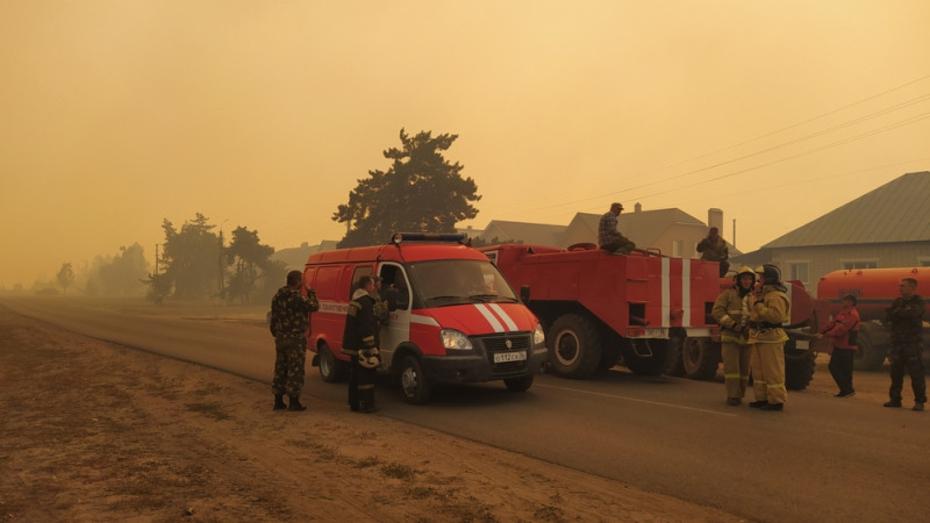 В Борисоглебске попросили откликнуться очевидцев масштабного возгорания в лесу