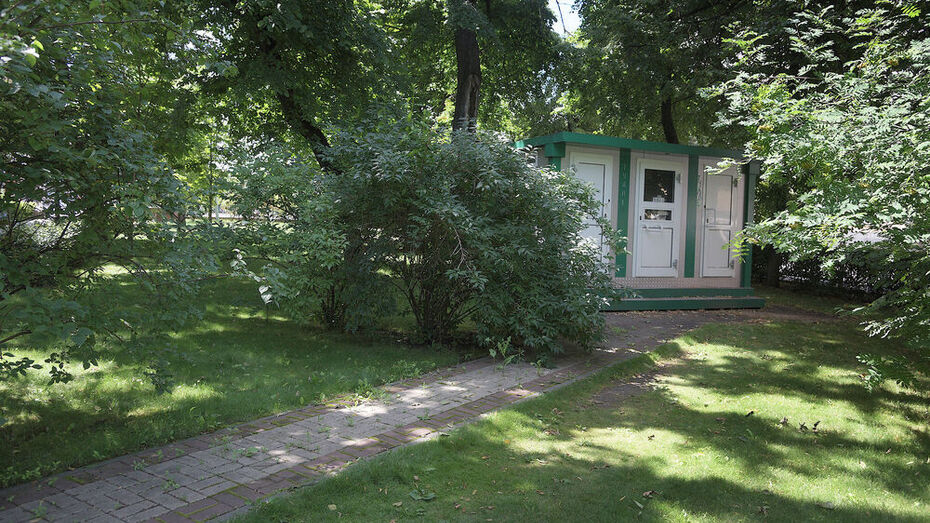 Пять общественных туалетов установят в Воронеже весной