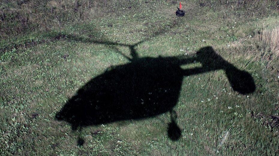 В Воронеже вертолетный клуб возобновил перевозку пассажиров после судебного запрета