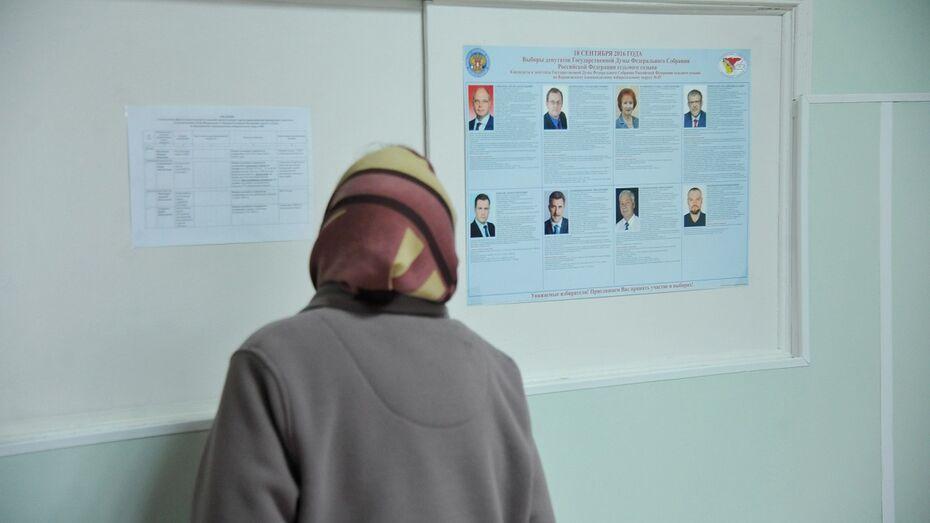 Воронежские политологи о выборах: «Реформа партийной системы дала результаты»