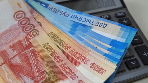 Задолженность предприятий Воронежской области по зарплате снизилась в 1,6 раза за год
