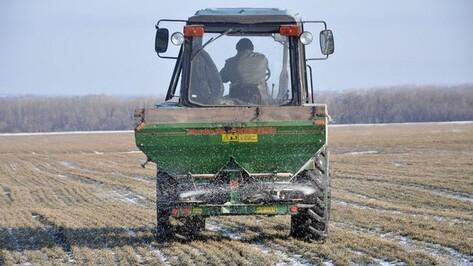 В Воронежской области тракторист раздавил 3-летнюю племянницу