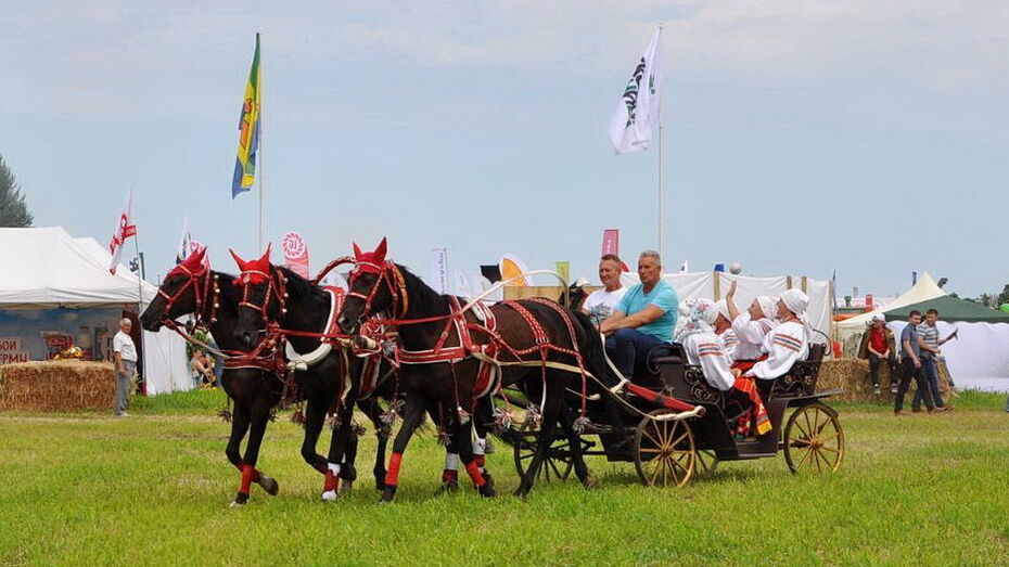 В Лисках пройдет первый районный фестиваль народного творчества «Казачья колыбель»