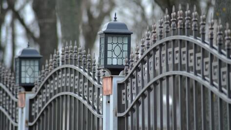 Мэрия Воронежа решила отдать в концессию Бринкманский сад