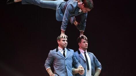 Воронежские акробаты победили на международном цирковом фестивале «Золотой слон»