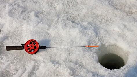 В Воронеже пройдут всероссийские соревнования по рыболовному спорту