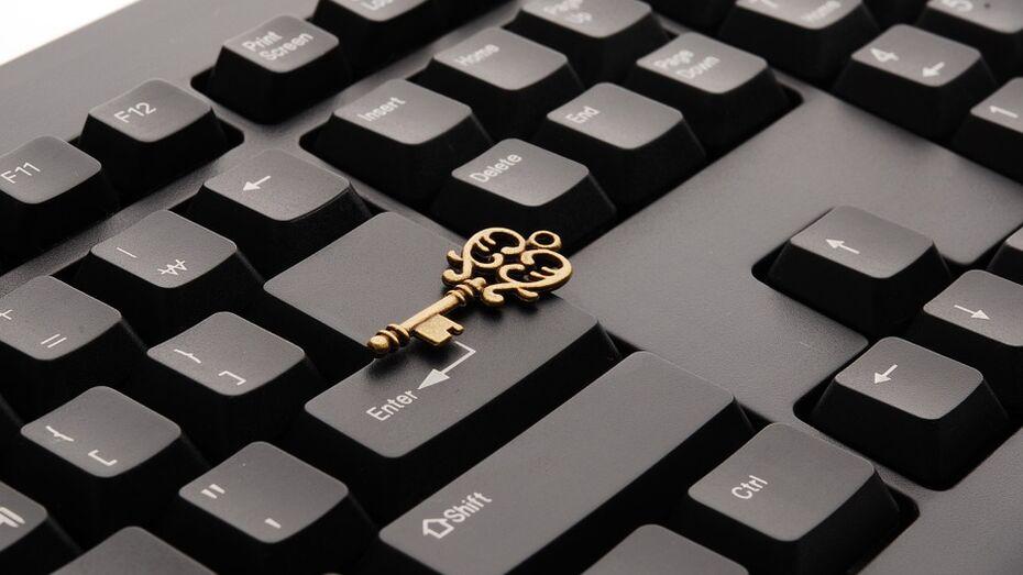 Воронежский областной суд отказал в блокировке сайта PornHub