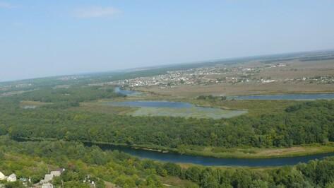 Рамонский район в областном конкурсе на лучший муниципалитет представит Ступино