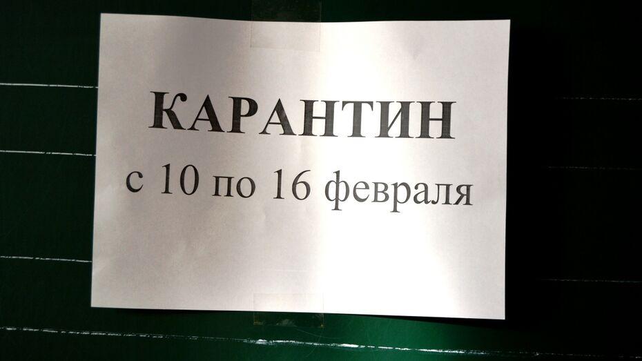 В Россошанском районе все 40 школ закрыли на карантин до 16 февраля
