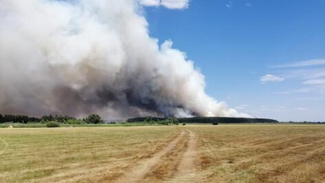 В Воронежской области из-за пожара эвакуировали санаторий