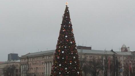 Главная елка Воронежа откроется 31 декабря
