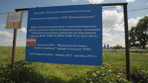 Депутаты Воронежской облдумы пока не определились, просить ли правительство «заморозить» разработку никелевых месторождений