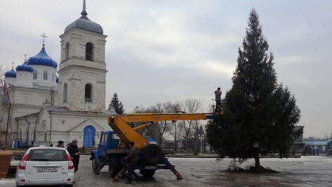 Житель села Репьевка подарил односельчанам 12- метровую ель