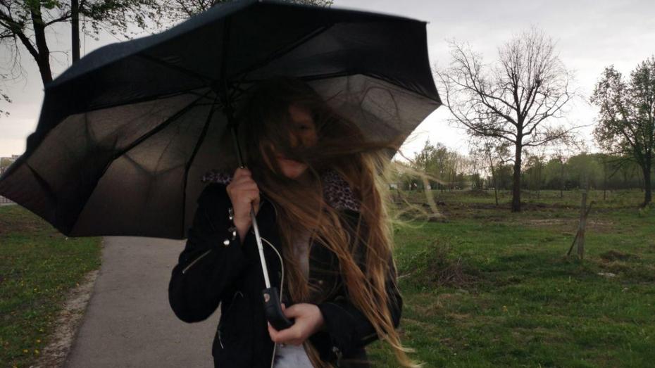 Крепкий ветер накроет Воронежскую область в воскресенье
