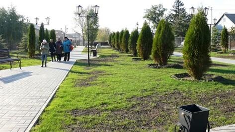 В рамонском селе открыли новый парк