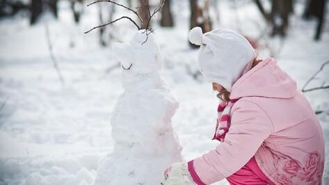 Рабочая неделя в Воронеже будет теплой и снежной
