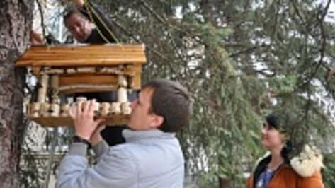 Павловские чиновники призвали горожан накормить птиц