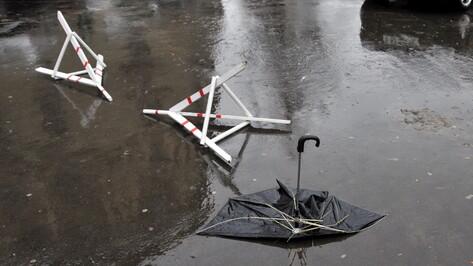 Спасатели вновь предупредили воронежцев о сильном ветре