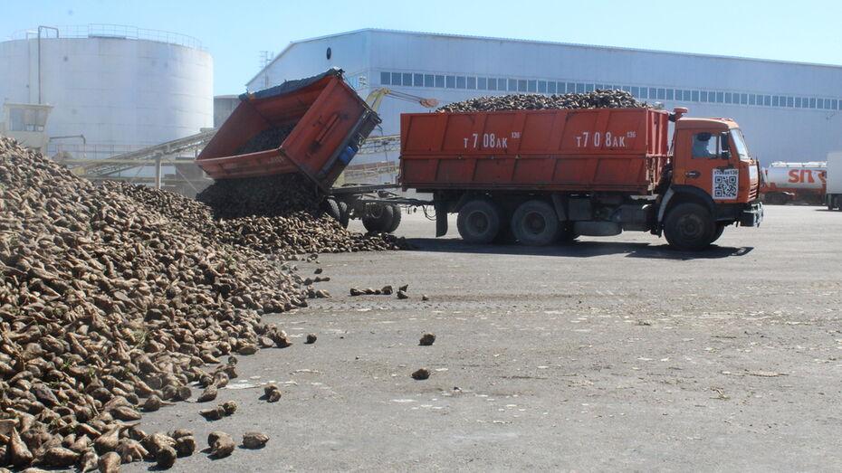 С территории ольховатского комбината украли 380 кг сахара