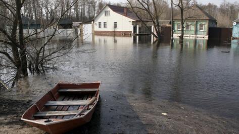МЧС спрогнозировало возможное затопление 30 мостов в Воронежской области