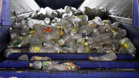 На раздельный сбор мусора в Воронежской области потратят 500 млн рублей в 2020 году