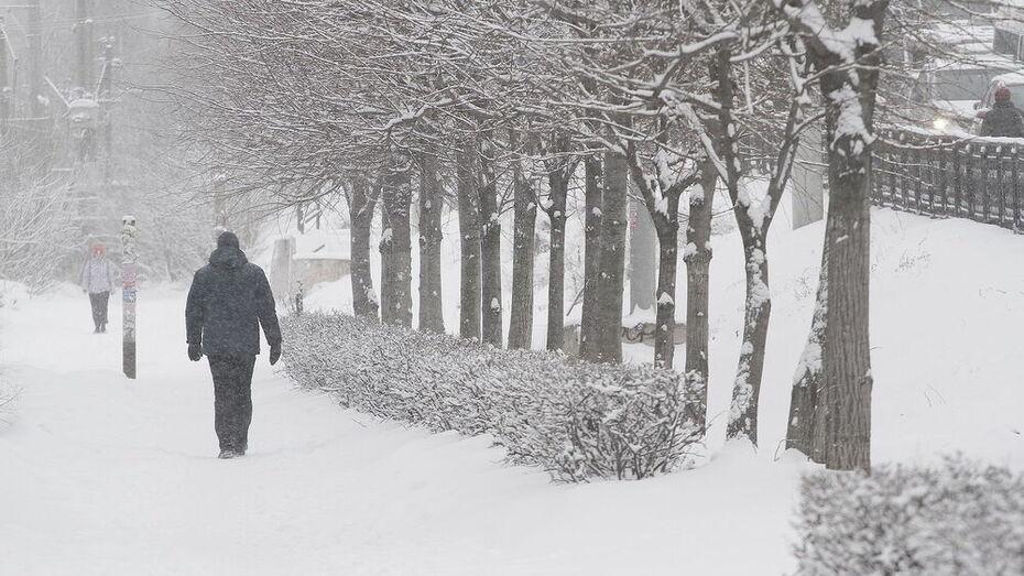 Мощный снегопад надвигается на Воронеж