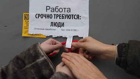 В Воронежской области уменьшилось количество безработных