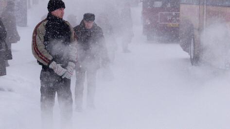 Штормовое предупреждение из-за снегопада объявили в Воронежской области