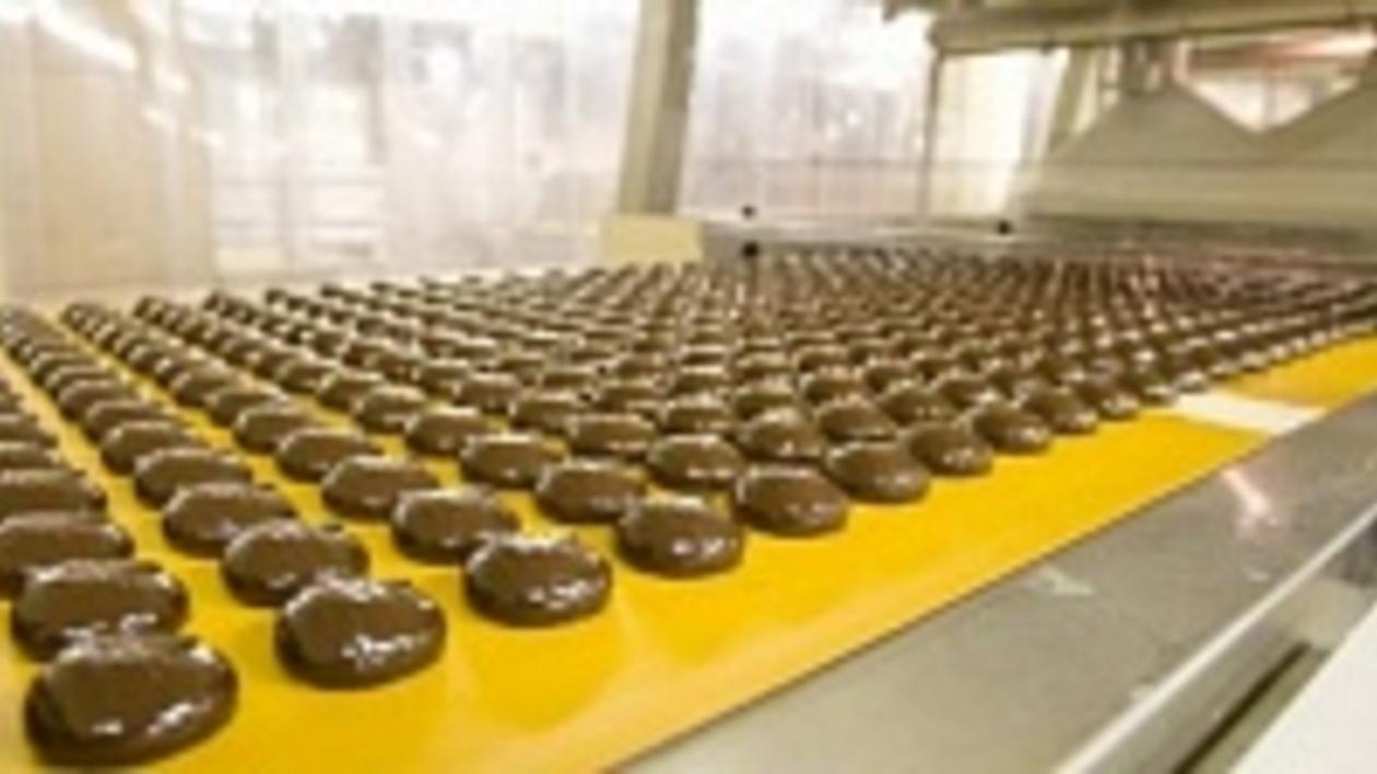 Первая очередь кондитерской фабрики под Воронежем заработает в конце 2014 года