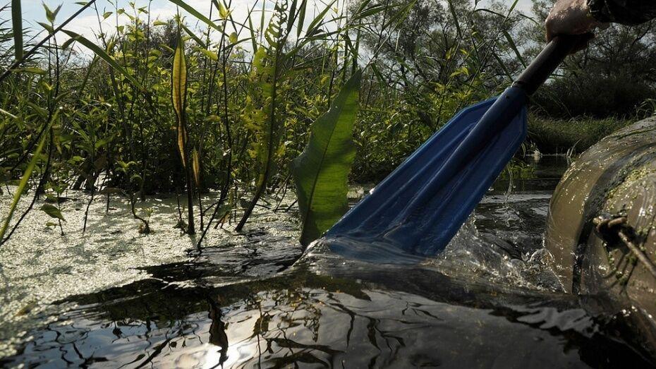 Воронежские санврачи: концентрация нефтепродуктов в реке Усманка соответствовала нормам