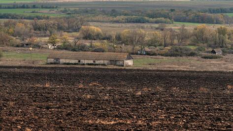 Фермеру из Воронежской области грозит до 6 лет за растрату субсидии