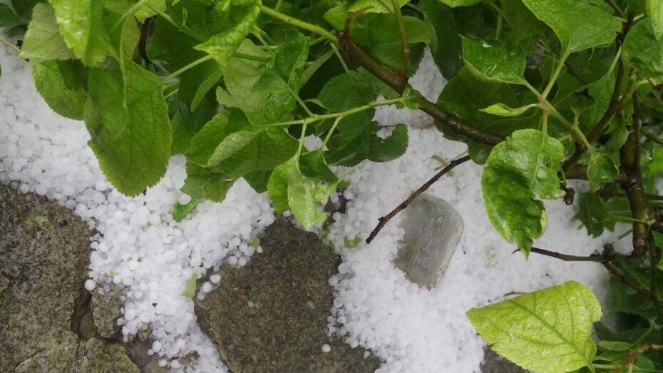 Спасатели предупредили о граде и грозе в Воронежской области в выходные