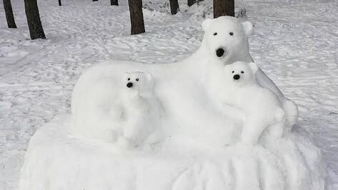 Семья снежных медведей поселилась в воронежском парке