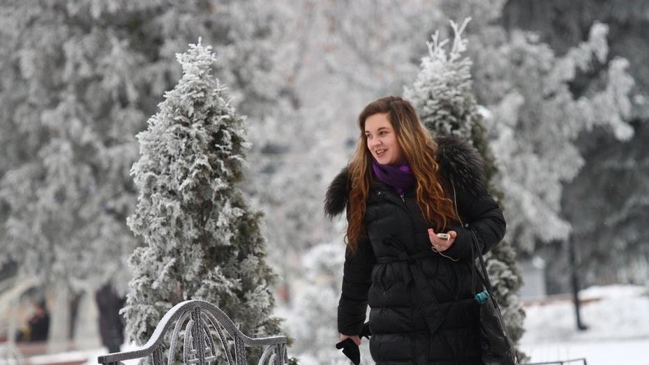 Снежный Воронеж останется без крещенских морозов